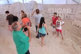 movie stars captured in sand at clearwater beach festival tbo com