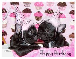 happy birthday bulldog cards set of 2 cards