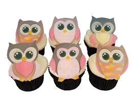 owl cake toppers and cupcake decorations birthday cake and