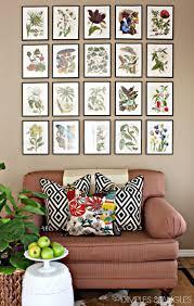 best 25 botanical gallery wall ideas on pinterest dorm photo