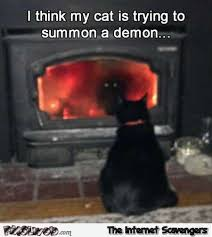 Demon Memes - i think my cat is trying to summon a demon funny meme pmslweb