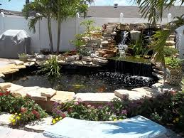 backyard fish pond maintenance media magazine
