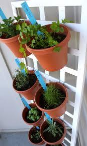 Homedepot Trellis Diy Space Saving Herb Garden