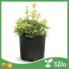 garden 1 gallon black plastic planter pots 1 gallon pot size