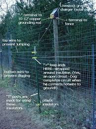 australian shepherd jumping fence fencing solutions