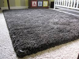 Crate And Barrel Carpet by Ideas U0026 Tips Charming Shag Rugs In Blue And White On Wooden Floor