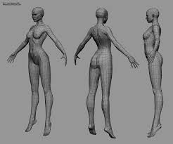 Female Body Reference For 3d Modelling Cgtalk Buttocks Topology Female And Pelvis Area 3d