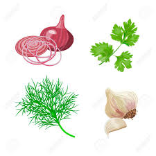 les herbes de cuisine situé à l aneth frais le persil l ail l oignon popular