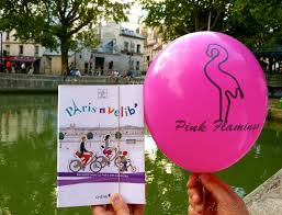 balloon delivery st louis pink flamingo pizza delivered to your picnic at the canal martin