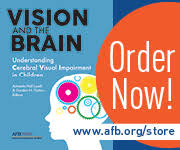 Define Cortical Blindness Cortical Visual Impairment Traumatic Brain Injury And