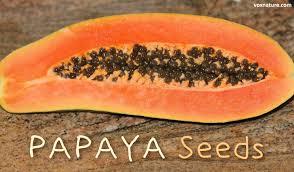 benefits of papaya seeds plus how to eat them