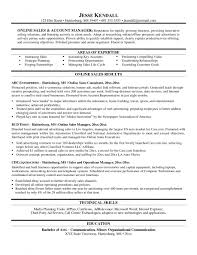 Cover Letter Education Ecommerce Consultant Cover Letter