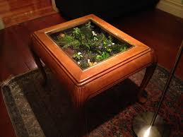 Wooden Center Table Glass Top Vivarium Coffee Table