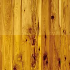 cypress australian wood flooring cypress wood floors