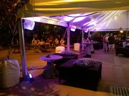 Zoo Lights Memphis Tn by Party Rentals Enchanting Events Page 5