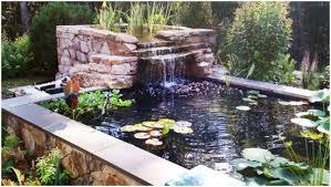 backyards appealing diy backyard ponds diy backyard ponds and