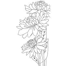 catherine scanlon cling stamps chrysanthemum trio ellen hutson