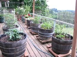 Raised Vegetable Garden Ideas Vegetable Garden On Wheels Hydraz Club