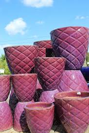 369 best pottery outlet at the barn nursery chattanooga tn
