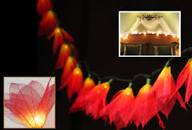 Novelty Patio Lights Novelty String Lights On Winlights Deluxe Interior Lighting