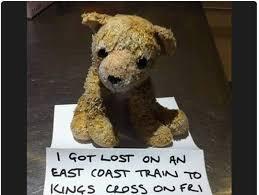 Teddy Bear Meme - lost teddy bear and his magic trip back home loldamn com