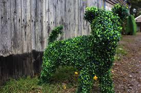 Horse Topiary 100 Animal Topiary Labrador Retriever 30 Horse Topiary 72
