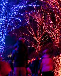 zoo lights portland oregon christmas zoo lights christmas lights decoration