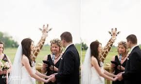 columbus zoo and aquarium venue powell oh weddingwire - Columbus Zoo Wedding