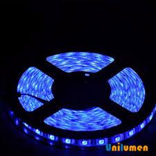 blue led strip lights 12v ce rohs dc12v led strip ce rohs dc12v led strip suppliers and