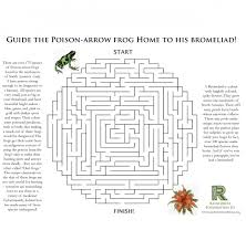 rainforest games and worksheet activities rainforest foundation us