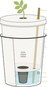 Small Self Watering Pots Best 25 Garden Watering System Ideas On Pinterest Water Systems