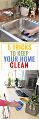 how to keep your house clean all the time how to clean a glass cooktop