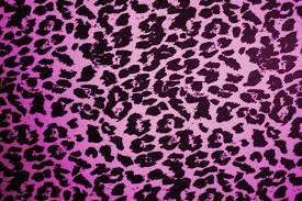 images about cheetah print on pinterest leopard wallpaper and idolza