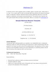 waitress resume duties server resume sample waitress resume
