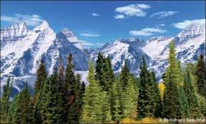 mountain backdrop aspen mountains backdrop 3 backdrops beautiful