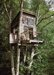 Cool Tree Houses 39 Best Tree House Ideas Cool Images On Pinterest Treehouses