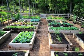 10 raised bed garden ideas from sunset inexpensive raised bed