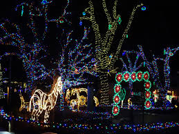 zoo lights at hogle zoo pattie s place hogle zoo zoolights fun