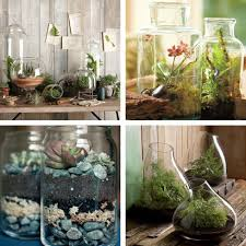 Indoor Waterfall Home Decor by House Plants Decoration Ideas