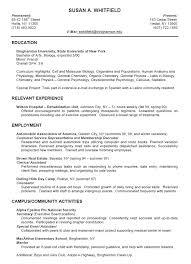 Skills In Job Resume by Relevant Skills In Resume 8395