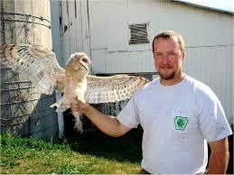 North American Barn Owl The Owls Of Penn U0027s Woods Pennsylvania Ebird