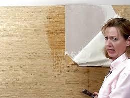 wallpaper removal easy u0026 fast hamilton burlington