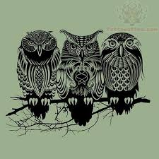 tree owls sitting on branch tattoo design