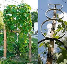 Vine Trellis Ideas 17 Best Upcycled Trellis Ideas For Garden Gardens Trellis Ideas