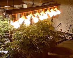 Grow Room Lights 1600 Watt Cfl Light Bar Grow Rooms Michigan Medical Marijuana