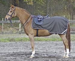 Bucas Irish Leg Warmer Riding Rug Ausreit Nierendecke Campingreitsporthomps Jimdo Page