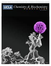 ucla chemistry u0026 biochemistry newsletter 2013 2014 volume 1 by