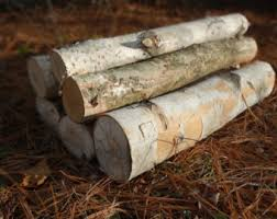 Artificial Logs For Fireplace by Birch Logs Etsy