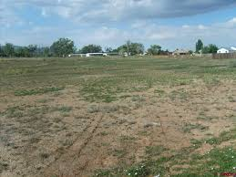 Homes For Rent In Colorado by Colorado Realty Homes For Sale Co Farm Land Ranch Property Real