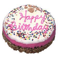 birthday dog cake u0026 bones